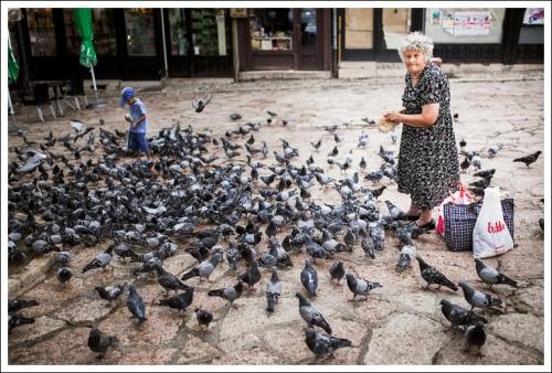 La signora dei colombi